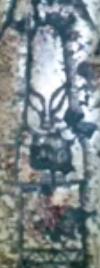 E:\aliens\05Poses\Fg002.PNG